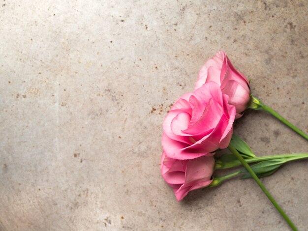 Roze bloemen op grungeachtergrond