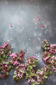 Roze bloemen van bloeiende fruitboom op vintage tafel.