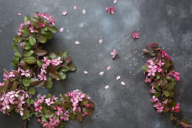 Roze bloemen van de bloeiende boom van de fruitappel op uitstekende lijst. kopieer ruimte. uitzicht van boven.