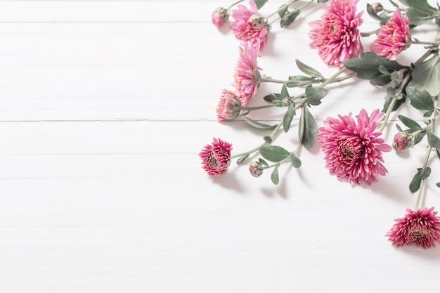 Roze chrysanten op witte houten achtergrond