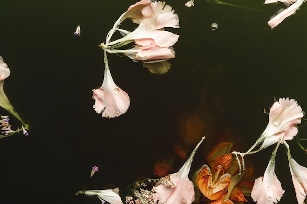 Roze en oranje bloemen in zwart water