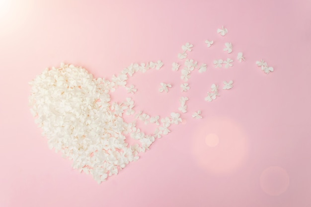 Roze en witte manuka boom bloemen gerangschikt in hartvorm op witte achtergrond.