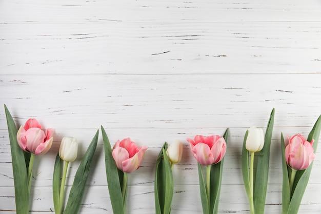 Roze en witte tulpen die op witte houten plank worden verfraaid