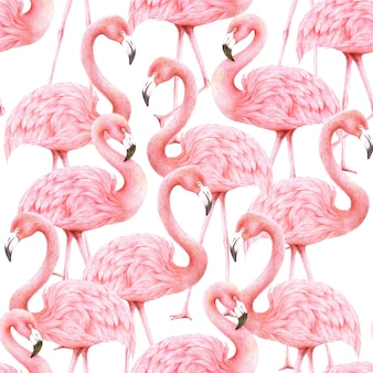 Roze flamingo's behang