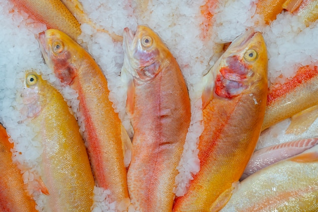 Roze forel wordt verkocht in de winkel. vissen op ijs.