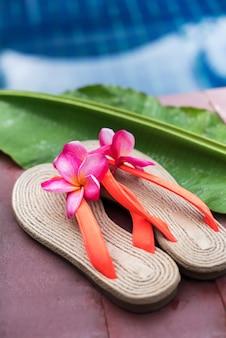 Roze frangipani dichtbij de ruimte van het zwembadexemplaar