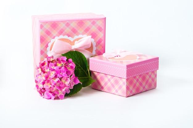Roze geschenkdoos met hortensiabloem. geïsoleerd op een witte achtergrond