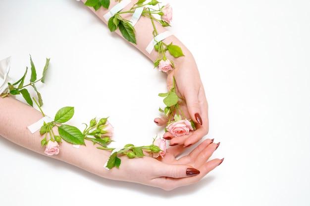 Roze hand in hand nam knoppen op handen, op witte achtergrond, isolator, het concept van de handhuidzorg toe.