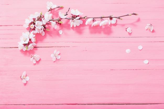 Roze kersenbloemen op houten achtergrond