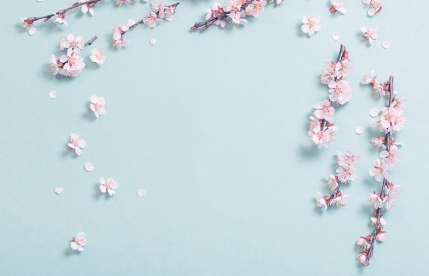 Roze kersenbloemen op papier achtergrond