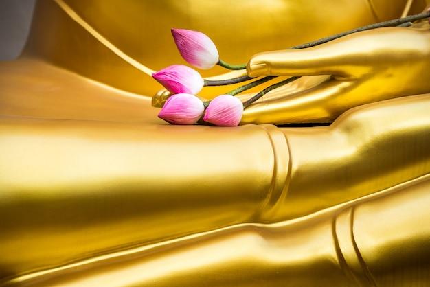 Roze lotusbloem gezet op gouden boeddha hand.
