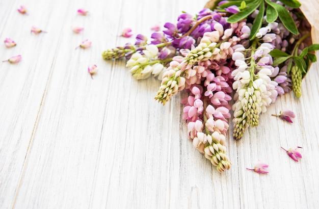 Roze lupinebloemen