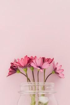 Roze madeliefjes in glazen pot