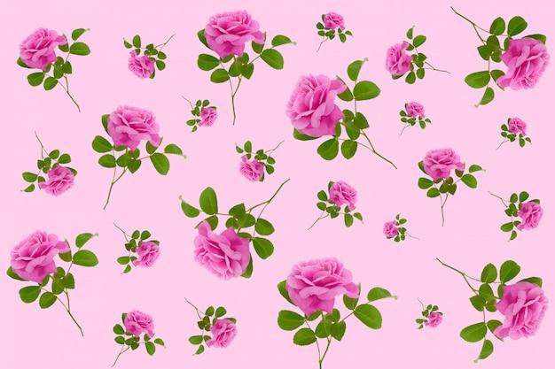 Roze naadloze bloemenpatroon. roze rozen op een roze achtergrond.