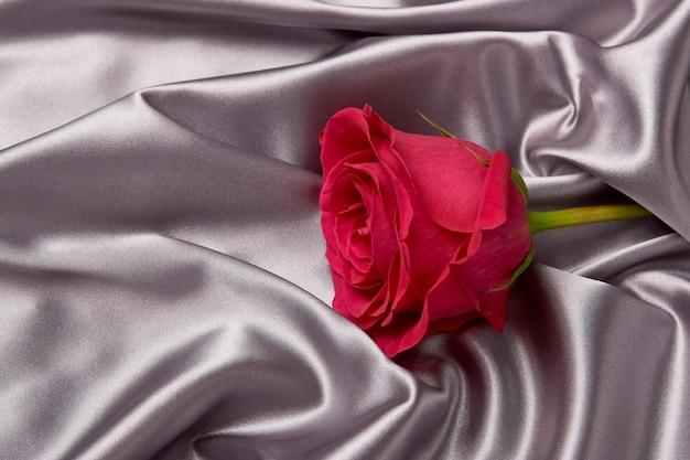 Roze nam op grijze zijdeachtergrond met exemplaarruimte toe