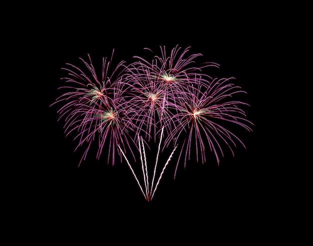 Roze ontploft vuurwerk geïsoleerd op zwart