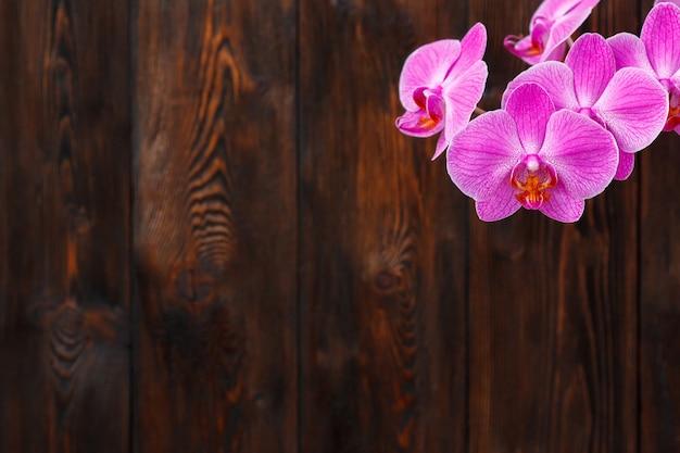 Roze orchideebloem op een houten oppervlakte, exemplaarruimte