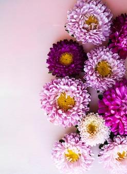 Roze, paarse, lila asterbloemen liggen op een roze houten achtergrond. plaats voor tekst.