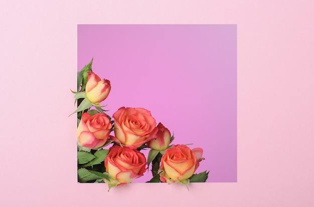 Roze papieren vierkant frame met rozen op roze oppervlak