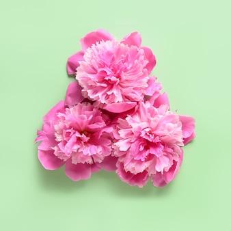 Roze pioenbloemen op groene achtergrond.