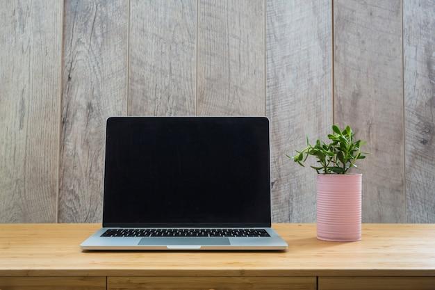 Roze potplant met laptop op houten tafel