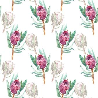 Roze protea bloem aquarel illustratie. naadloos patroonontwerp op een witte achtergrond.