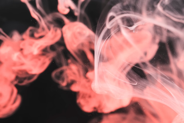 Roze rook op zwarte achtergrond