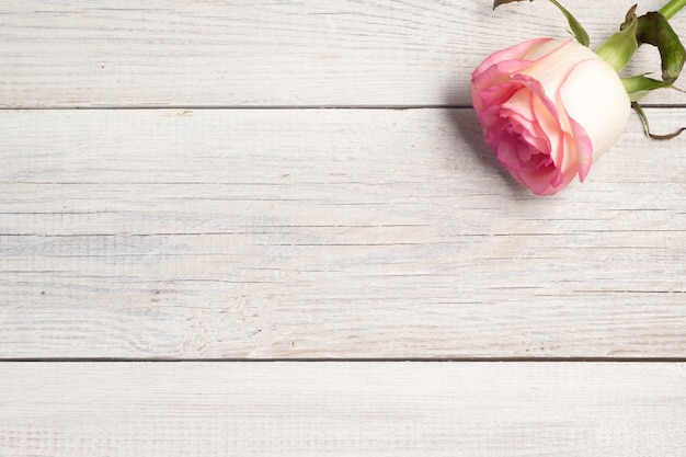 Roze roos op witte houten vintage achtergrond.