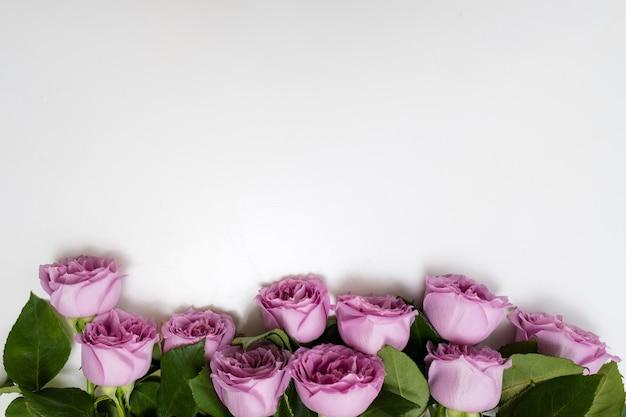 Roze rozen bloemen op de top van witte achtergrond. symbool van elegantie, genegenheid en verfijning. vrije ruimte concept