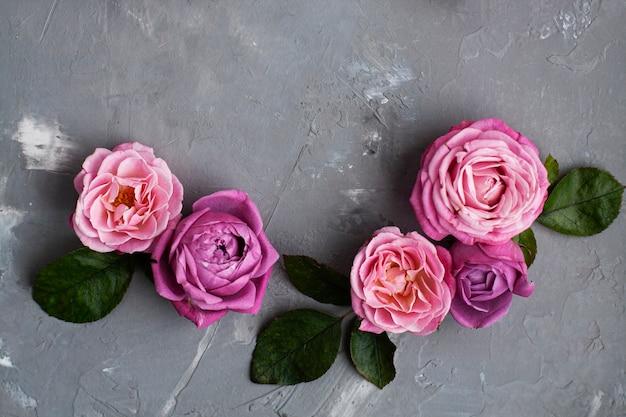 Roze rozen liggen op een grijze betonnen achtergrond. plaats voor begroetingstekst.