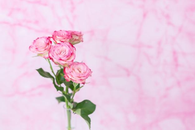 Roze rozen op een roze marmeren achtergrond. close-up met ruimte voor tekst. briefkaart voor 14 februari