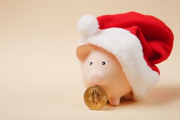 Roze spaarvarken met kerstmuts, bitcoin toekomstige valuta geïsoleerd op beige achtergrond. geld accumulatie investeringen, bankwezen zakelijke diensten rijkdom concept. kopieer ruimte reclame mock-up.