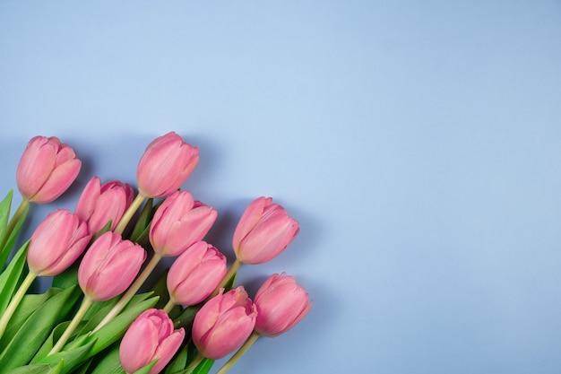 Roze tulpen bloemen op blauwe achtergrond. kaart voor moederdag, 8 maart, vrolijk pasen, valentijnsdag, verjaardag. wachten op de lente. wenskaart. platliggend, bovenaanzicht, ruimte voor tekst kopiëren