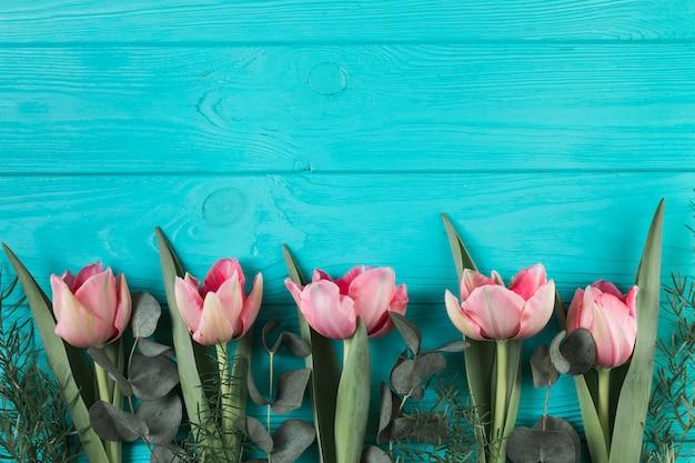 Roze tulpen en groene bladeren op turquoise houten plank