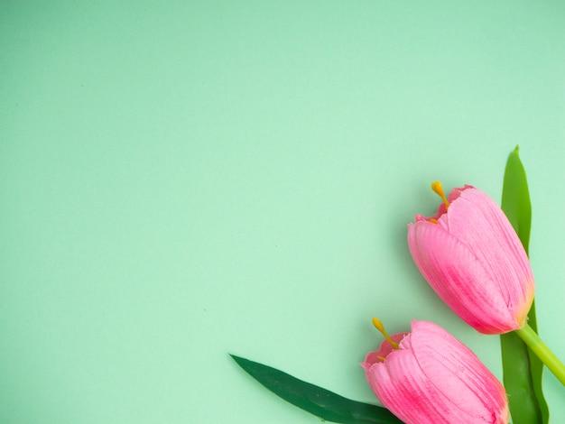 Roze tulpen groenboek achtergrond