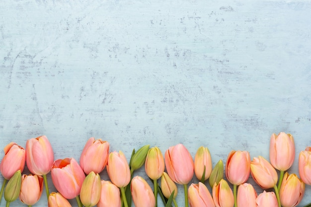 Roze tulpen op de vintage houten achtergrond