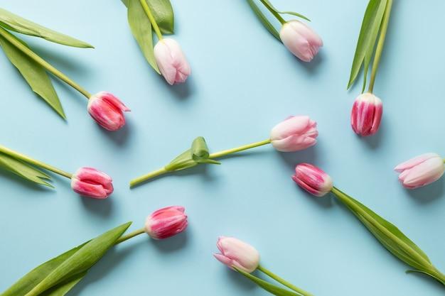Roze tulpen op een blauwe achtergrond.