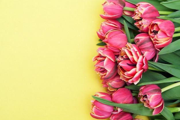Roze tulpen op een gele achtergrond. ruimte voor tekst kopiëren. spatie voor banner of wenskaart