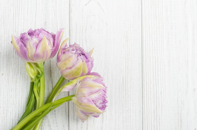 Roze tulpen op witte shabby houten planken