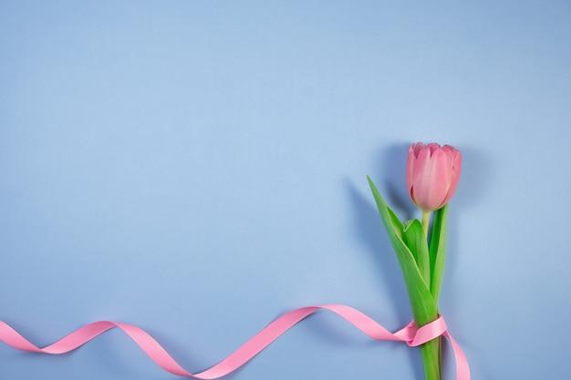 Roze tulpenbloemen met lint dat op blauw wordt geïsoleerd