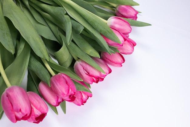 Roze tulpenknoppen met groene bladeren en stengels bevinden zich in de hoek van het frame