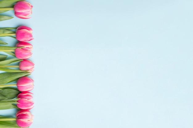 Roze tulpensamenstelling op blauw