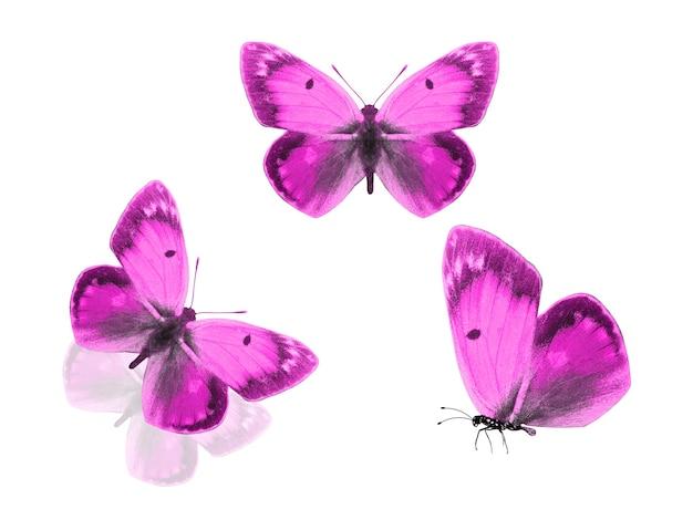 Roze vlinders geïsoleerd op een witte achtergrond. drie motten.