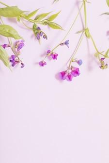 Roze wilde bloemen op roze papieren achtergrond Premium Foto