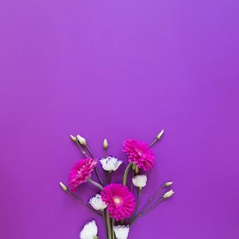 Rozen en gerberabloemenregeling op violette exemplaar ruimteachtergrond
