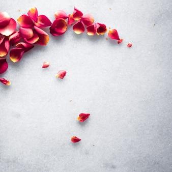 Rozenblaadjes op marmeren achtergrond bloemendecor en bruiloft flatlay