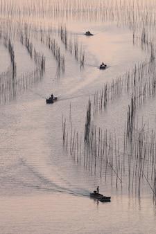 Rubberbootboten die op de rivier met riet, zonsonderganglicht varen