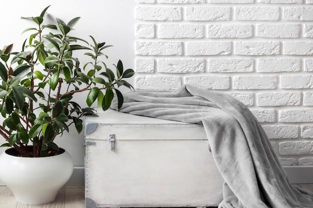 Rubberplant ficus elastica in witte bloempot en grijze zachte fleece deken op witte houten kist