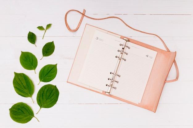 Ruimte roze notitieblok met beuken bladeren kopiëren
