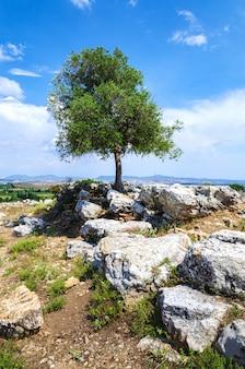Ruïnes van de oude stad teos. sigacik, seferihisar, izmir, turkije.